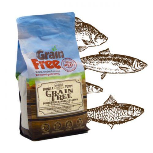 Cibo per cani Grain Free con salmone, pesce bianco dell'atlantico, patate e asparago