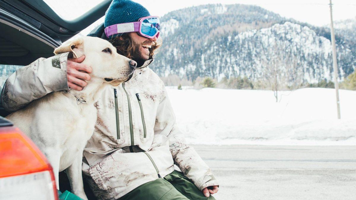 Cibo umido per cani sulla neve