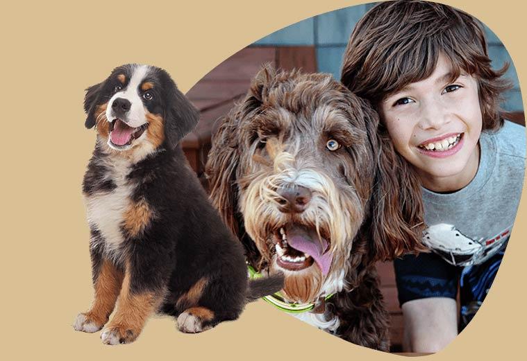 Maoripet cibo per la salute di cani felici